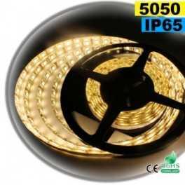 Ruban led Blanc Chaud 5050 IP65 60leds/m 5m