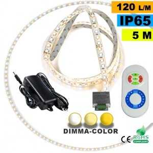 Pack Ruban Led 5m Dimma Color 3528 ip65 120 leds