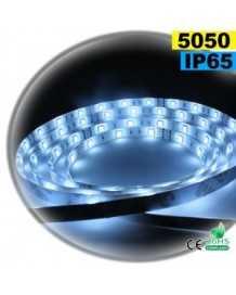 Ruban Led blanc SMD 5050 IP65 30leds/m sur mesure