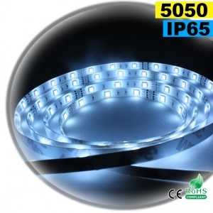 Ruban Led blanc SMD 5050 IP65 30leds/m sur mesure