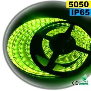 Ruban Led vert SMD 5050 IP65 60leds/m 5m