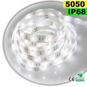 Ruban Led blanc SMD 5050 IP68 30leds/m sur mesure