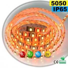 Ruban Led RGB-WW IP65 60leds/m SMD 5050 sur mesure