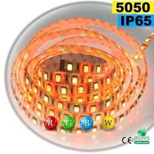 Ruban Led RGB-WW IP65 60leds/m SMD 5050 sur mesure