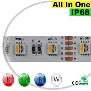 "Ruban Strip LEDs RGB-W IP68 - LED ""All in one"" 5 mètres"