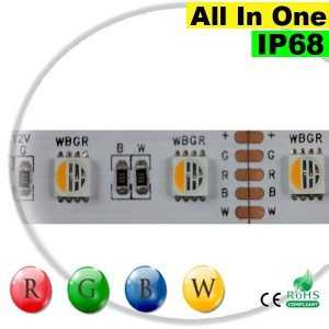 "Ruban LEDs RGB-WW IP68 - LED ""All in one"" 5 mètres"